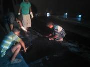 LPG Godowns Bitumen Mastic Flooring